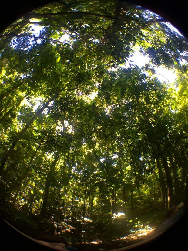 Cristalino_Lodge_Amazônia_62