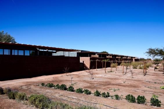 Tierra_Atacama_38
