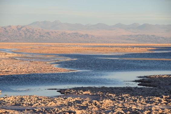 Tierra_ Atacama_16