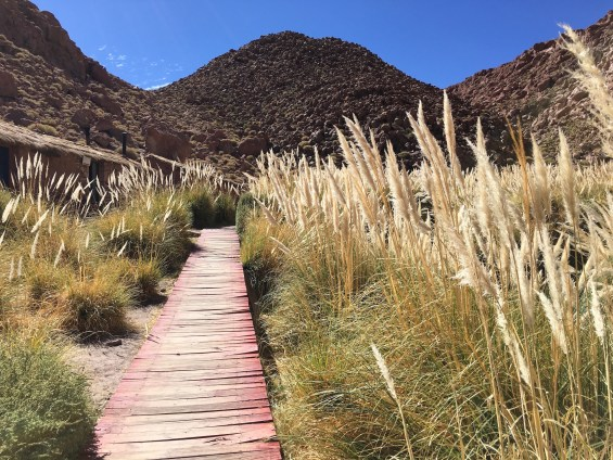 Tierra_Atacama_