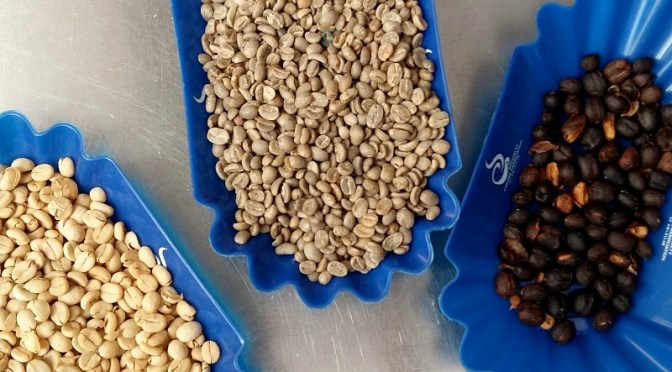 You Can Export Coffee from Colombia