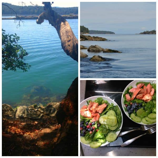 Grilled Salmon Salad with Blueberries and Fresh Figs. Gulf Islands ocean views