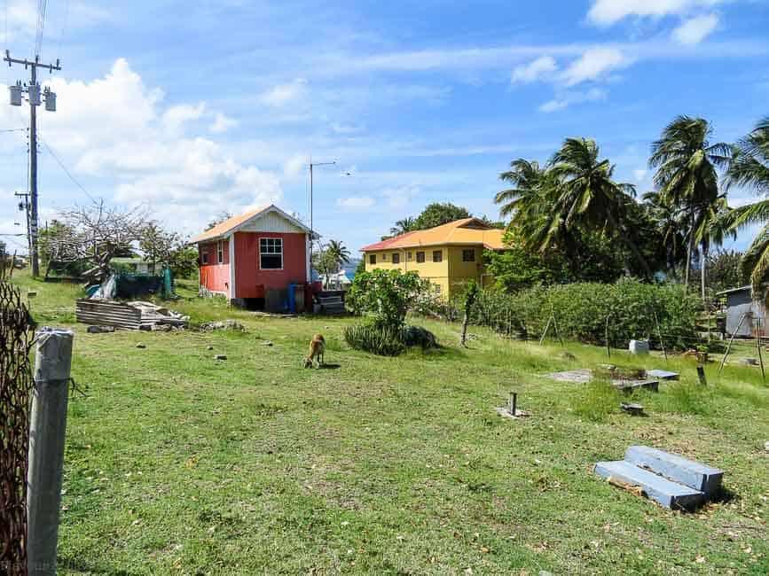 Petite Martinique neighbourhood