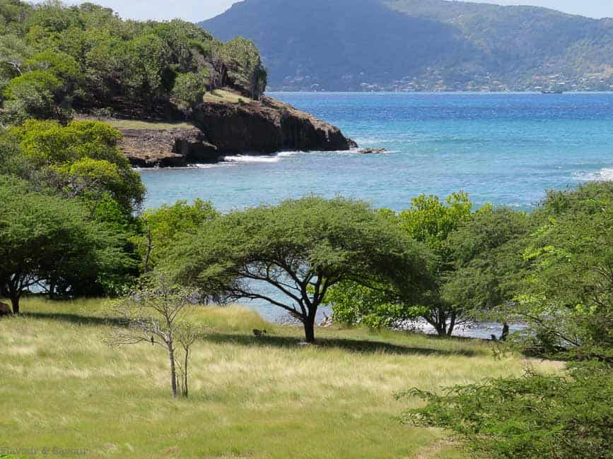 Sea Views Petite Martinique