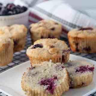 Ultra Moist Keto Blackberry Muffins