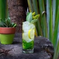 Lions Club Cocktail