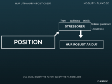 SWE Challenge Position