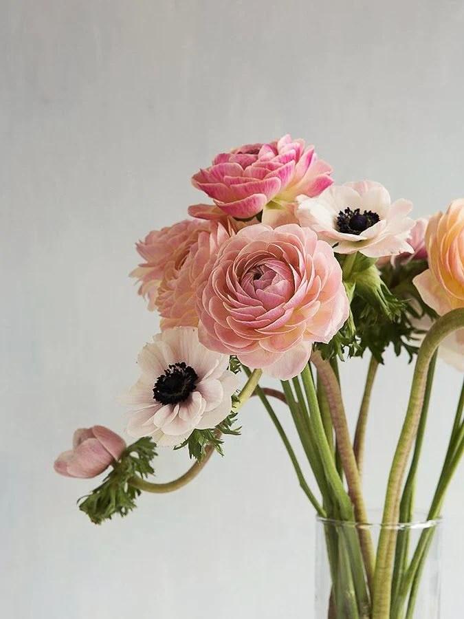 Friday Flowers - Flax & Twine