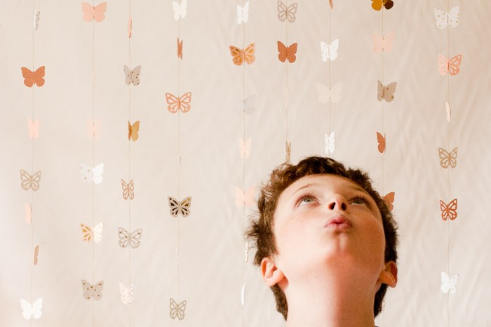 butterfly backdrop-9470