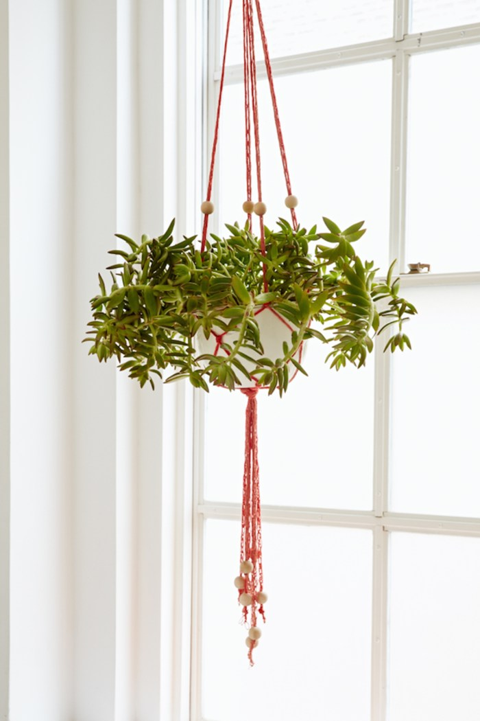 Diy Finger Knit Hanging Plant Holder Flax Amp Twine