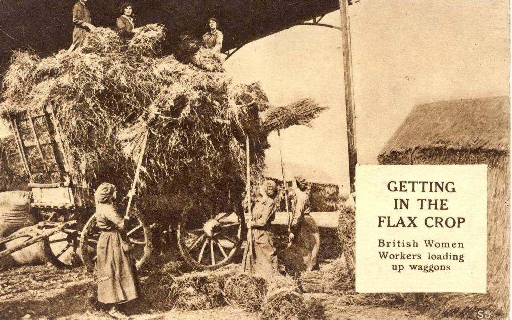 British-women-workers-getting-in-the-Flax-Crop