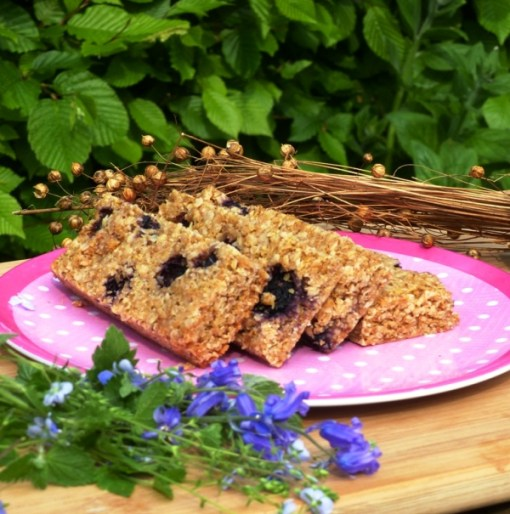 Blueberry Flaxjacks Gluten-free Linseed Flapjacks