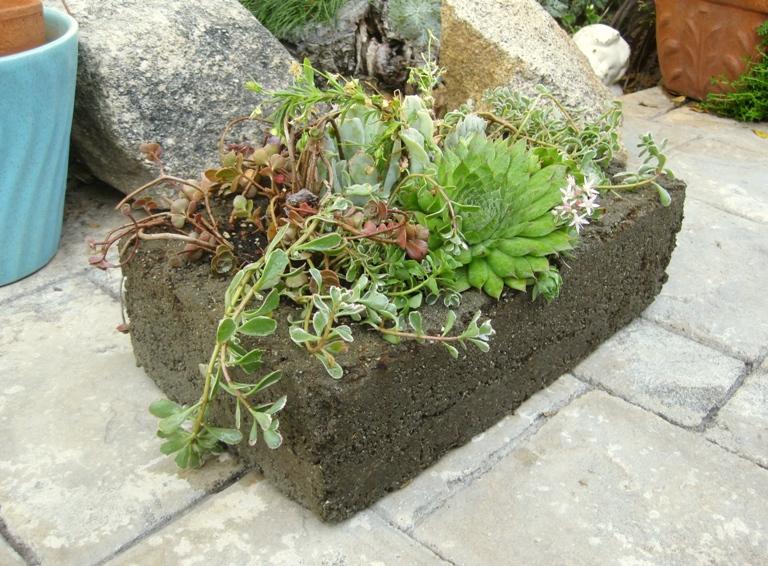 Make Your Own Concrete Planters Flea Market Gardening
