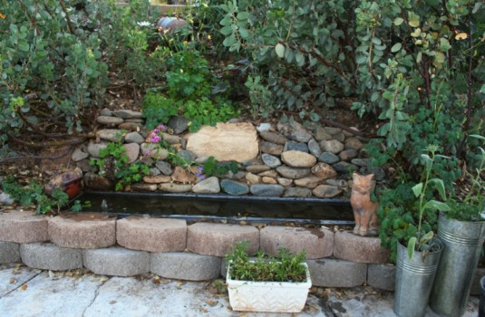 Cast off planter insert transforms into patio pond