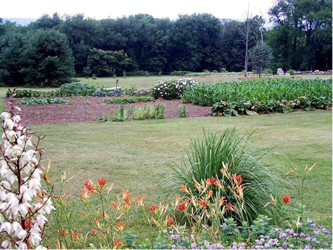 George Weaver's garden