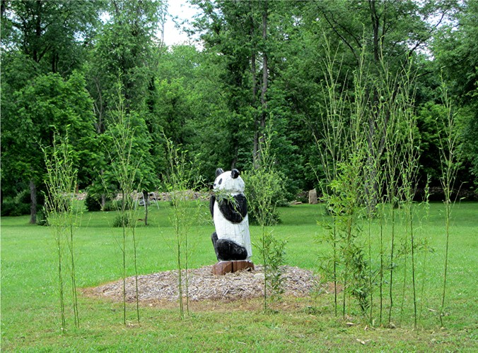 Carved 'panda guard' makes sure his food supply is sufficient, but not invasive