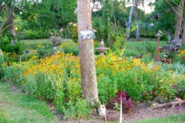 Blondeponders Garden and Duck tales