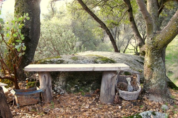 Shady rock bench, one board, two logs and four nails