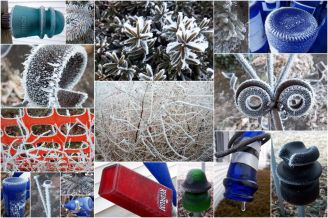 Wintry Garden Designs