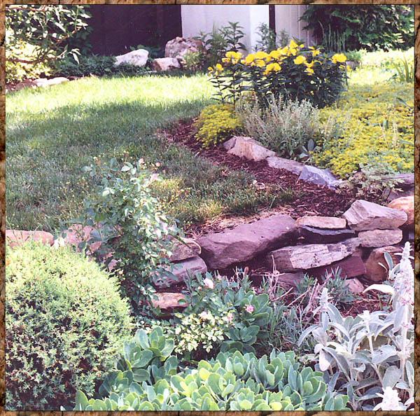 Little Wall rock garden by Stephie McCarthy