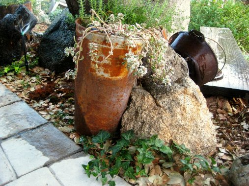 Rusted flower bucket