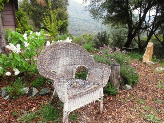 Decrepit wicker chair & How to plant flowers in an old wicker chair | Flea Market Gardening