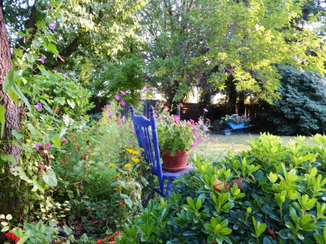 Jane's pretty garden
