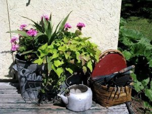 An artless arrangement of garden treasures