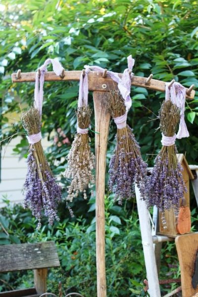 9 Uses For A Rusty Old Rake In The Garden Flea Market