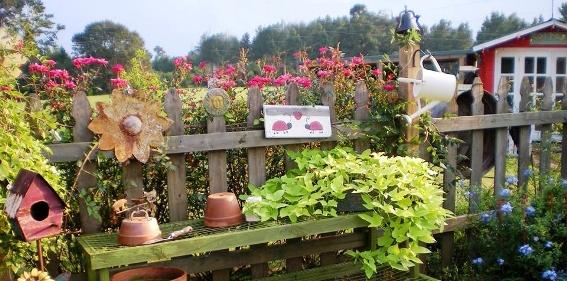 Billie's garden