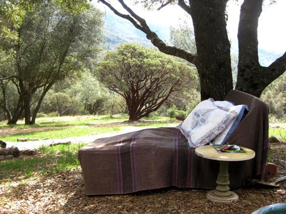 My comfy 'dreaming' lounge, outdoors, is a place to read, but,....I usually just daydream. ~~ Sue