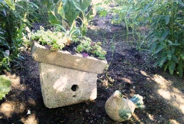 "Joan Meyers's succulent topped hypertufa birdhouse. She says, "" My 'Mud Pie Pot' Birdhouse with succulent roof."""