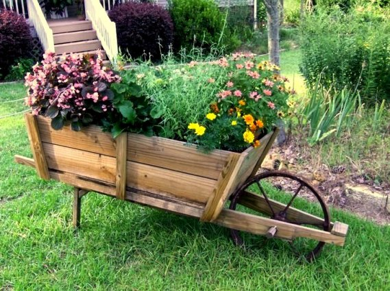 Lynne Mann's wheelbarrow