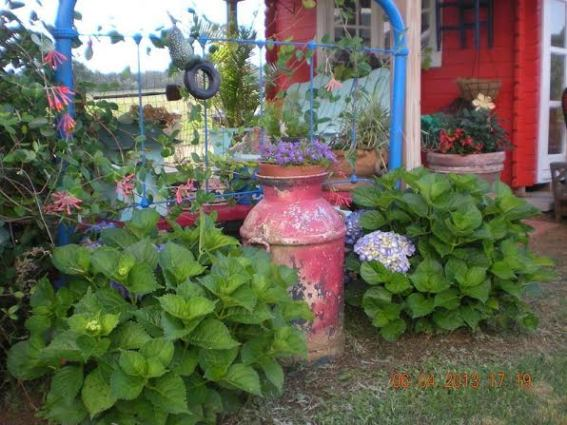 Billie Hayman's red, white and blue garden