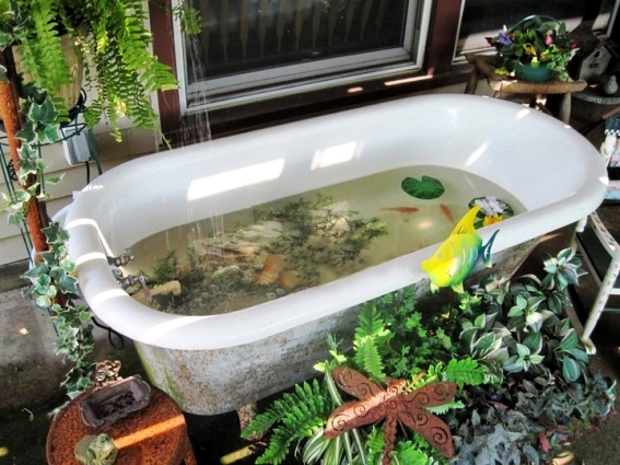 Bathing beauties repurposing bathtubs in the garden for Koi pond tubs