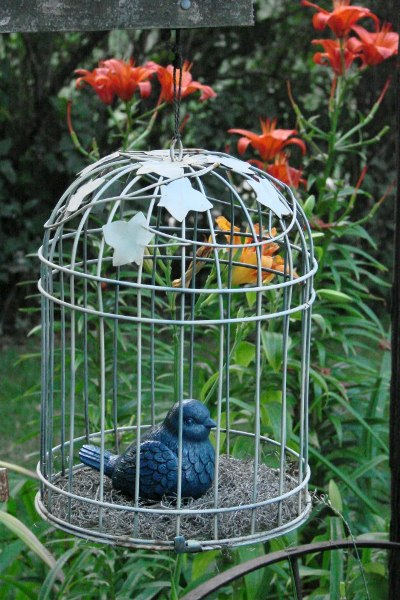 Jeanne Sammons found this cage at a friend's garden