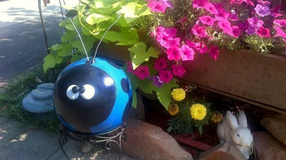 Diana See's goofy blue ladybug