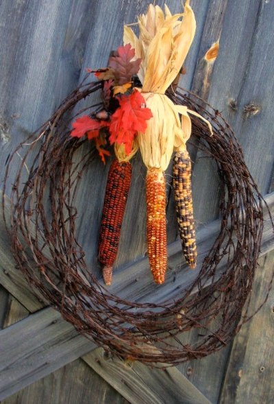 Fall Harvest corn and barb wire..