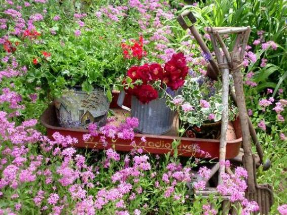 An old Radio Flyer, with roses spilling over..