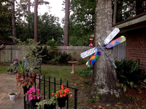 Denise Nestor found a perfect spot‎ for her dragonfly