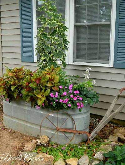 Galvanized trough acts a large wondowbox