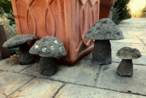 Hypertufa Mushrooms