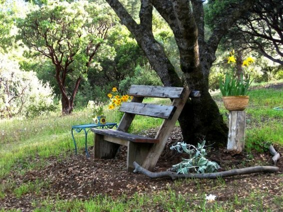Sue Langley's free and easy bench