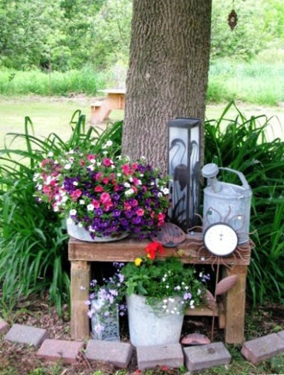 An old wooden bench set against a tree is the stage for cuteness!