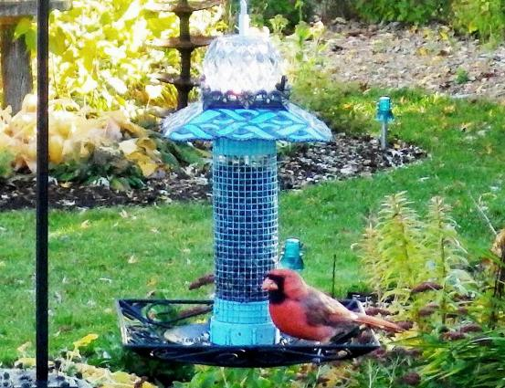 Ann Elias‎'s signature teal stacked bird feeder