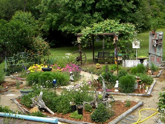 Carol Hall's parterre garden