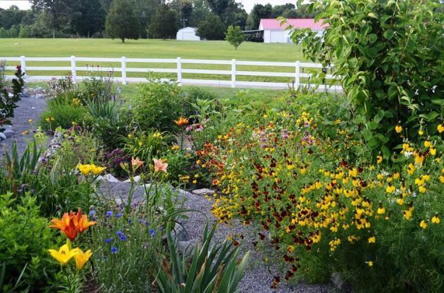 Garden bed 1