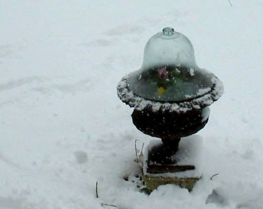 Laura Goines snowy cloche