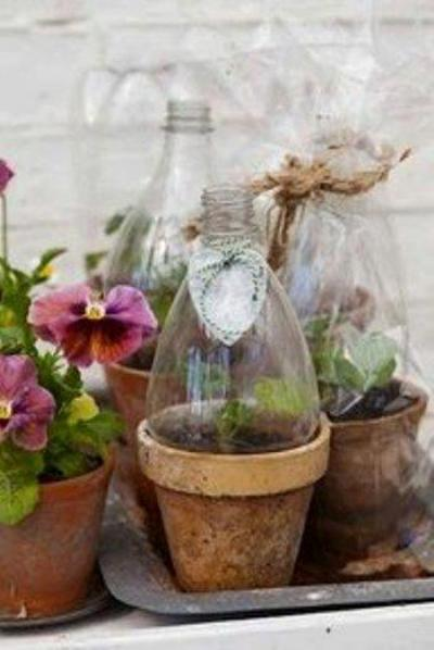 Shelley Novotny from JunkArta creates charming soda bottle greenhouses