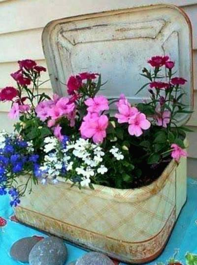 Luci Blake's geranium and lobelia